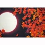 画像2: 【小風呂敷】 日本の秋 (2)