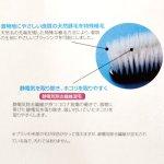画像2: 【保存用品】きものブラシ(静電気除去) (2)