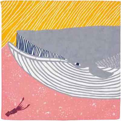 画像1: [50cm角 katakata むすび]ナガスクジラ ピンク(帯付) (1)