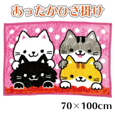 画像1: 【ファッション雑貨】「膝掛け毛布」WAKUWAKU ANIMAL あったか 防寒 猫 ネコ ねこ にゃんこ ニャンコ (1)